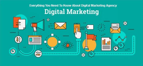 Digital Marketing Agency Mediapasta