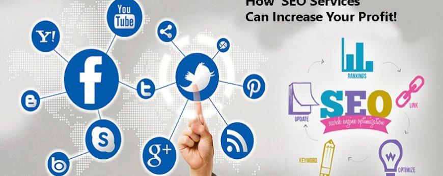 how seo can increase probit Mediapasta